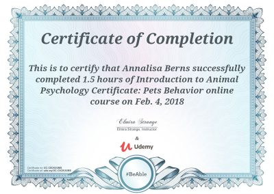 Udemy-Animal-Psychology