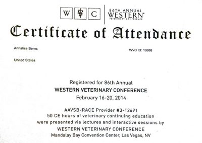 86th Annual Western Veterinary Conference (WVC) Certificate of Attendance for Annalisa Berns in Las Vegas, Nevada.